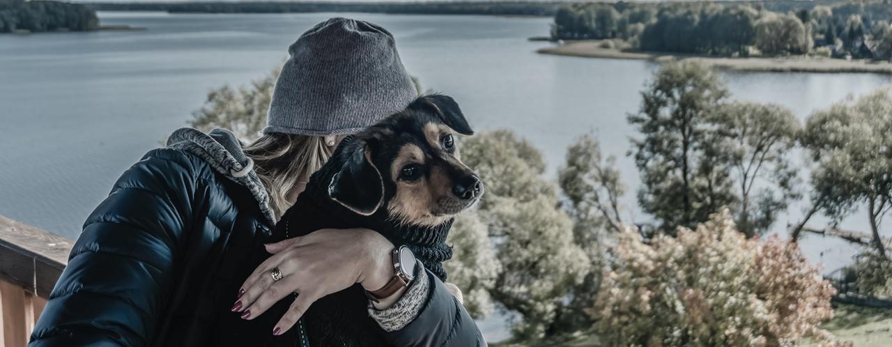 karta właściciela psa
