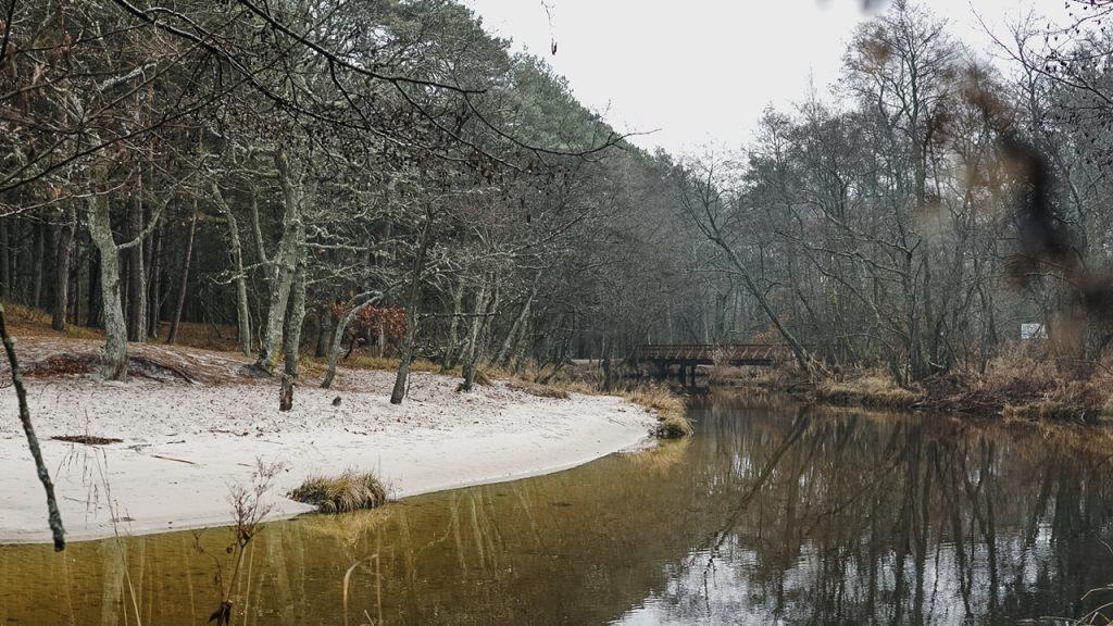 rzeka Piaśnica morze Bałtyckie