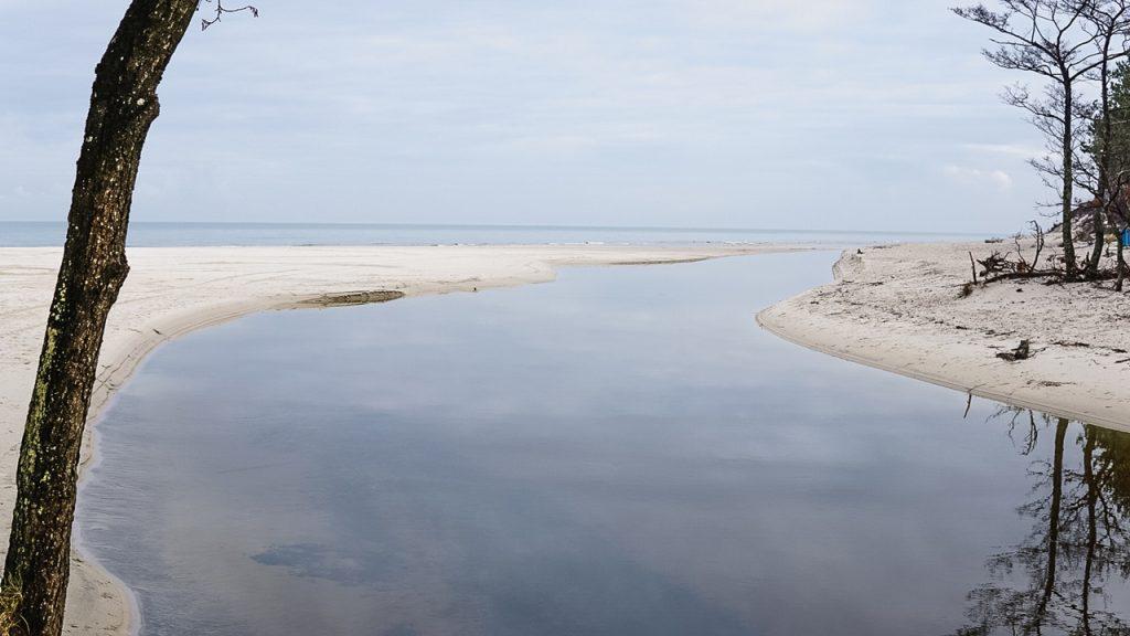 nad morzem bałtyckim - Dębki