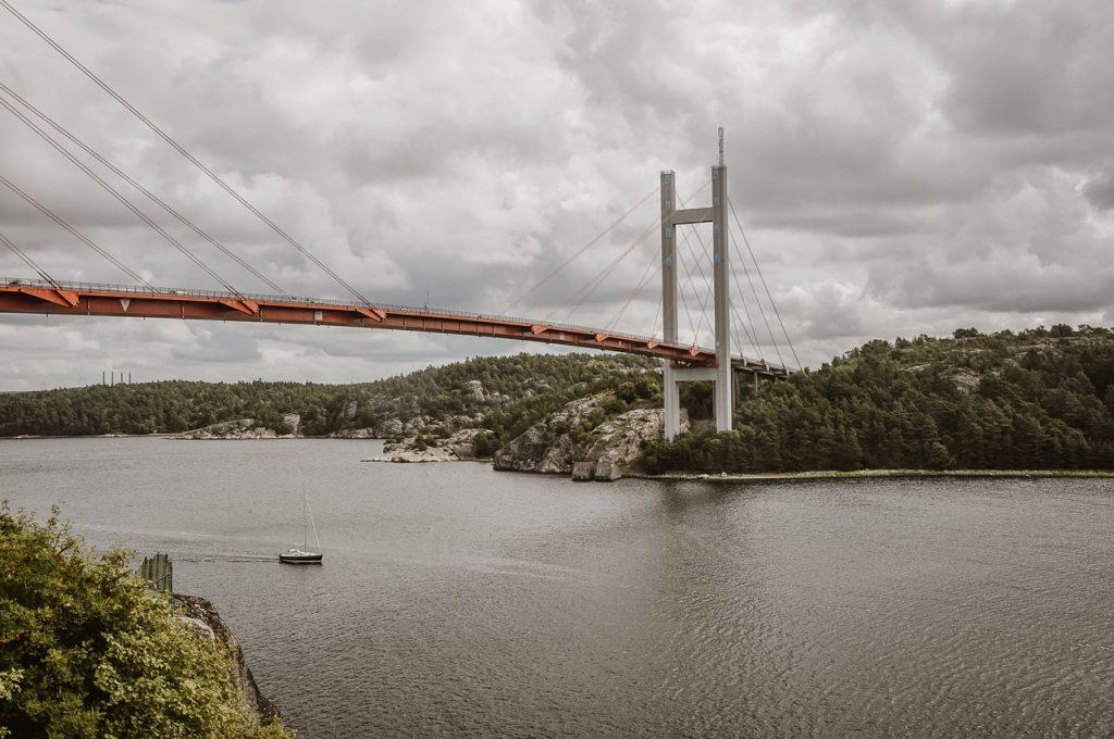 podróż z psem do Norwegii