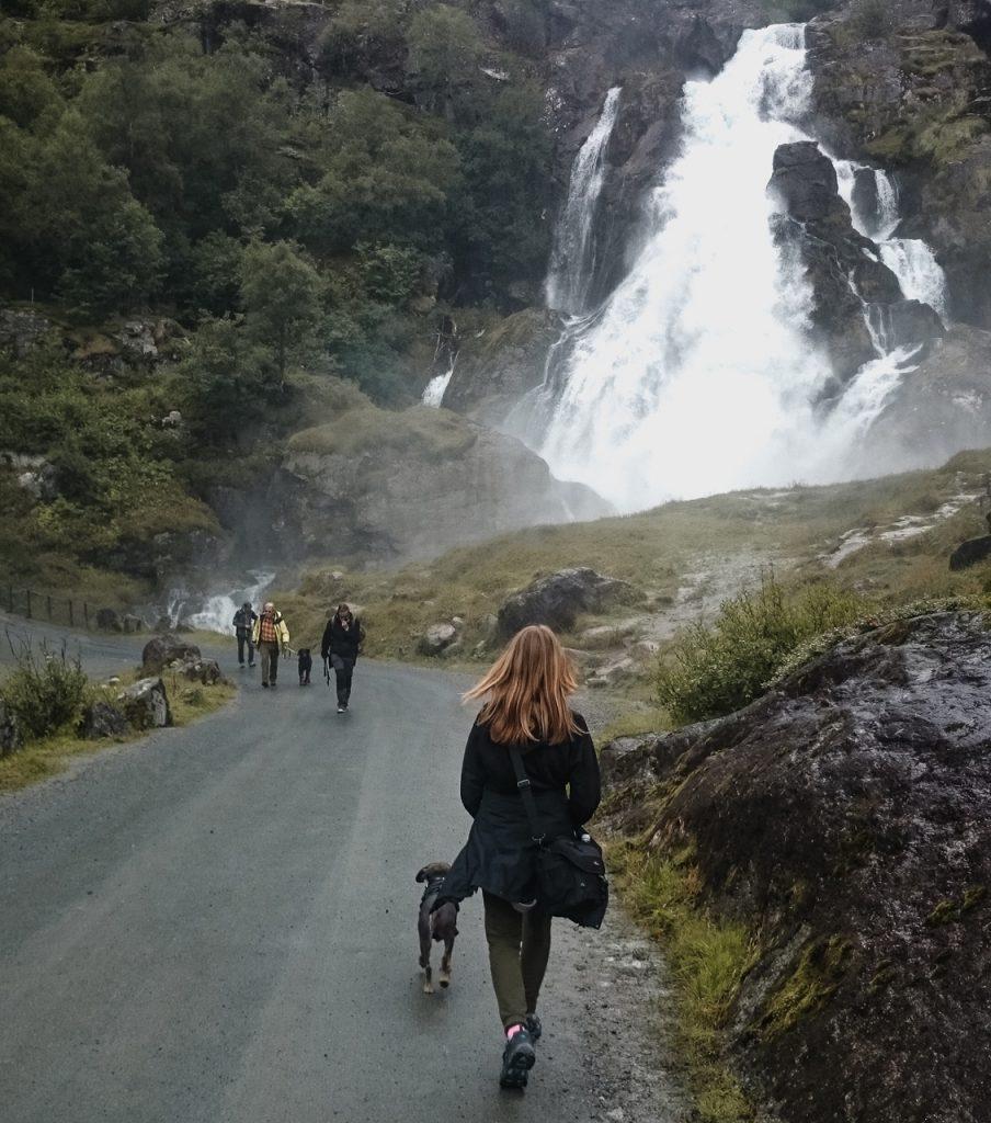 Norwegia wakacje