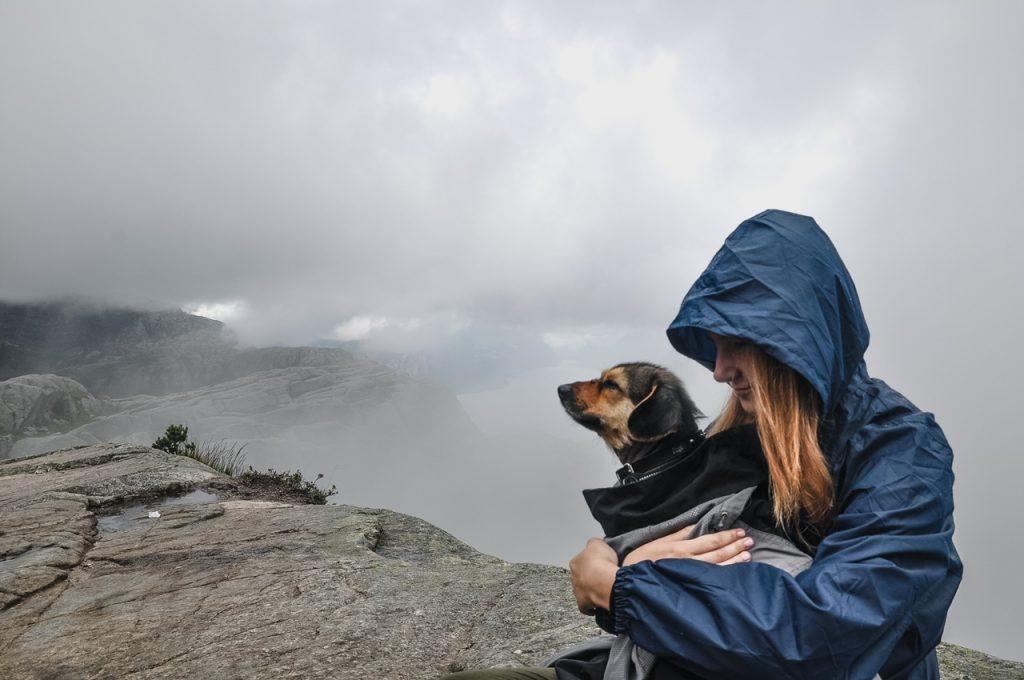 Preikestolen z psem
