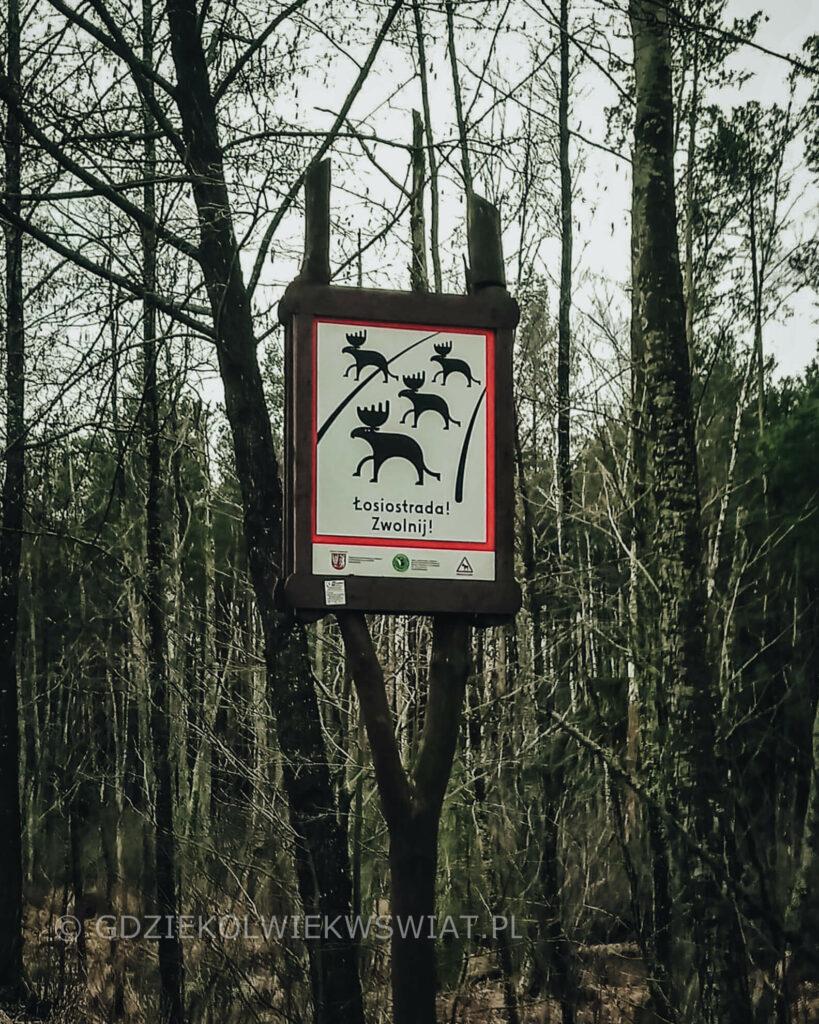 Biebrzański Park Narodowy Carska Droga