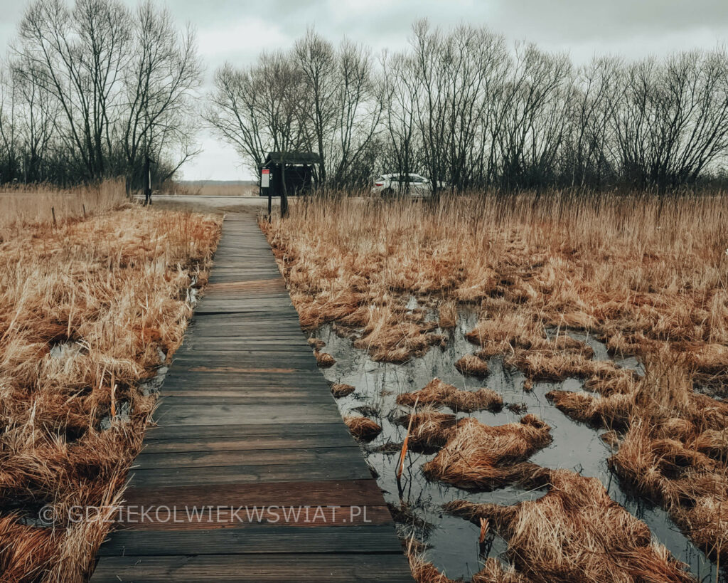 Biebrzański Park Narodowy blog