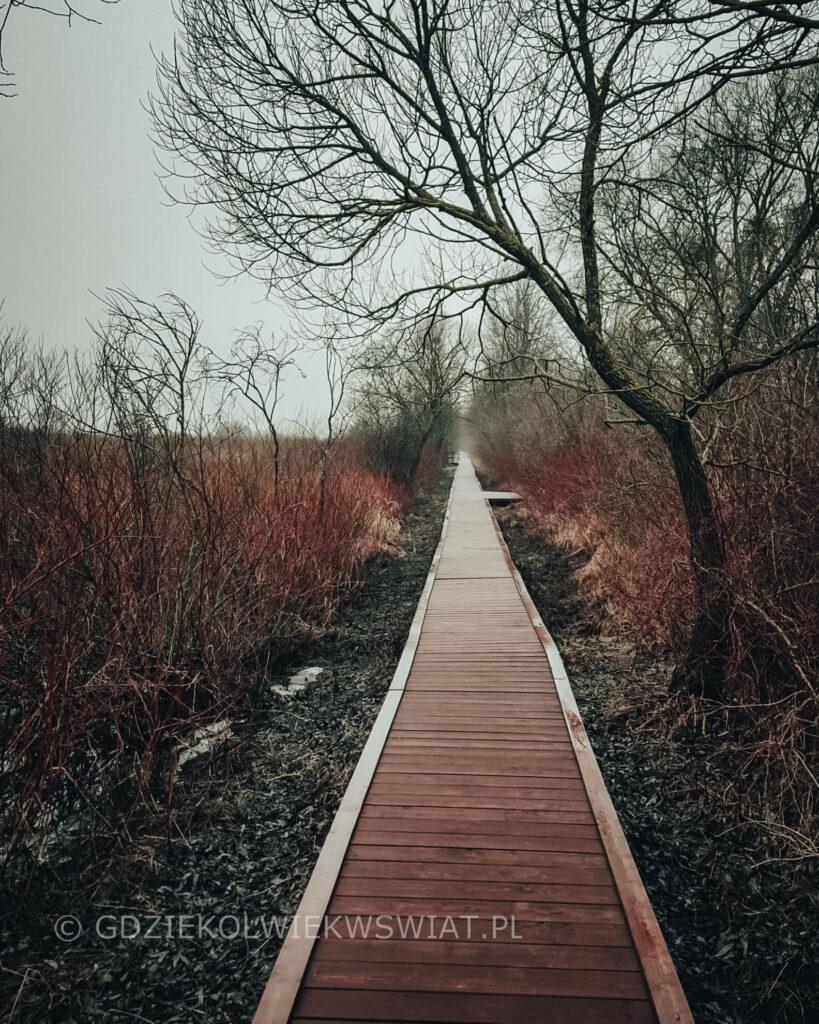 Biebrzański Park Narodowy szlak kładka