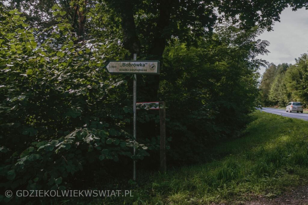 Bobrówka lubelskie w Lasach Parczewskich