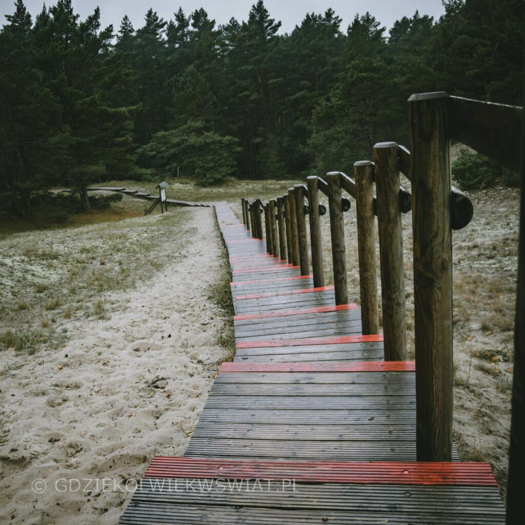 Wydma Orzechowska trasa piesza przez wydmy ruchome