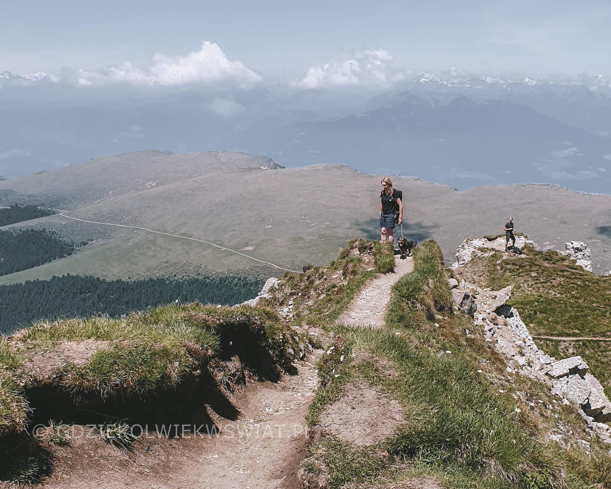 Dolomity Seceda z psem