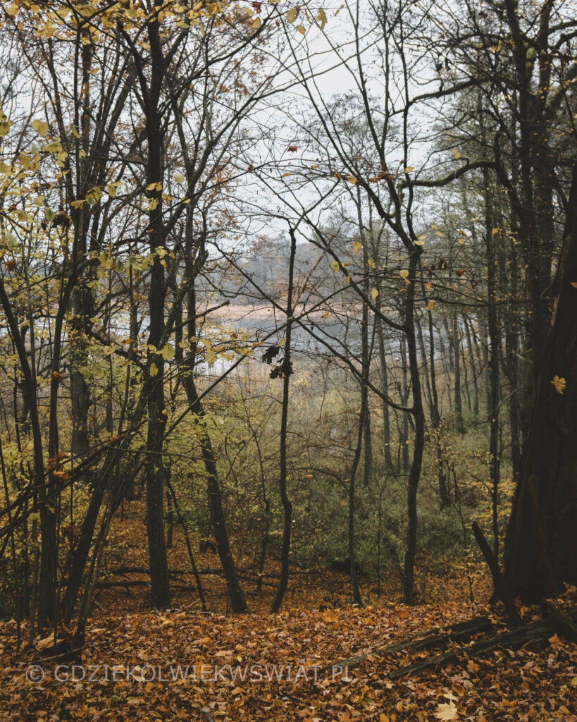 Jezioro Szymbarskie