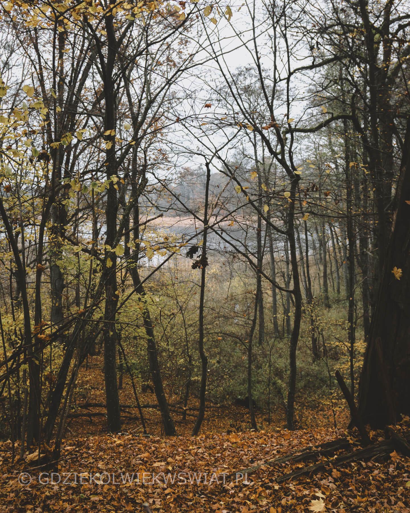 Zamki Polski - Jezioro Szymbarskie
