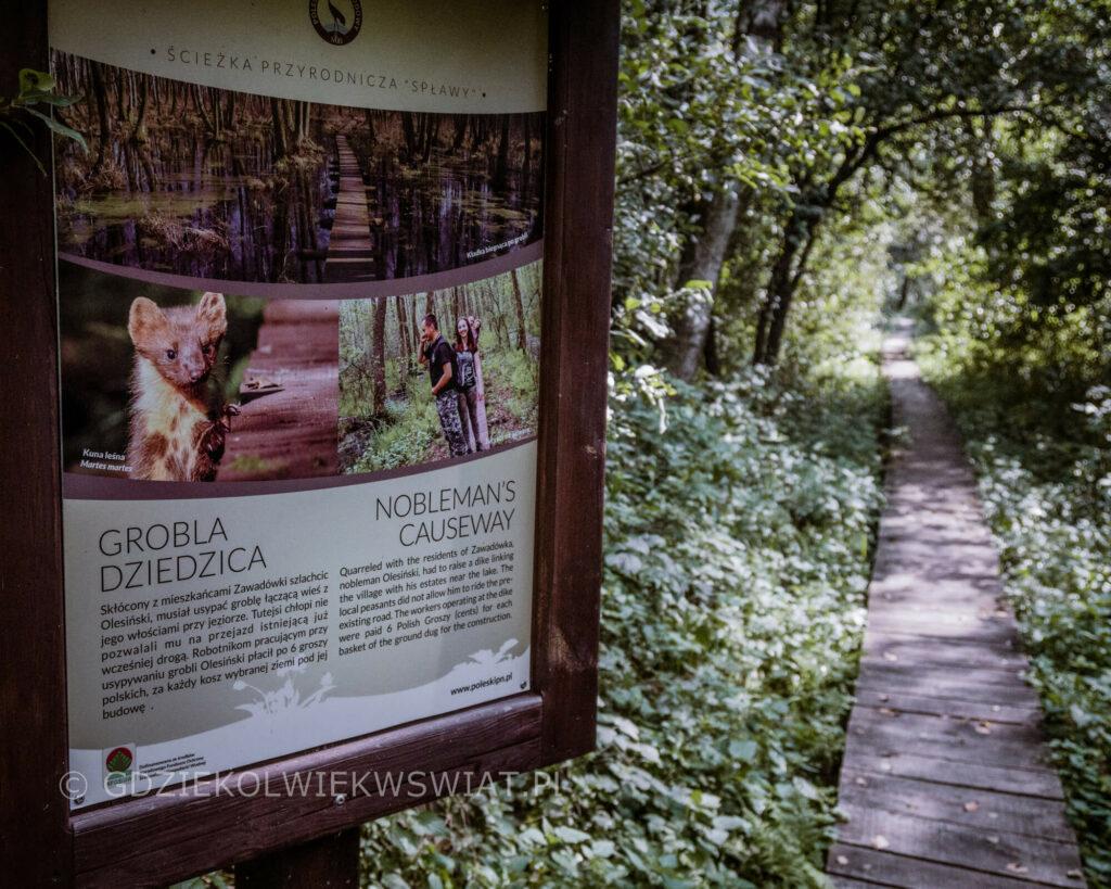 Poleski Park Narodowy ciekawostki