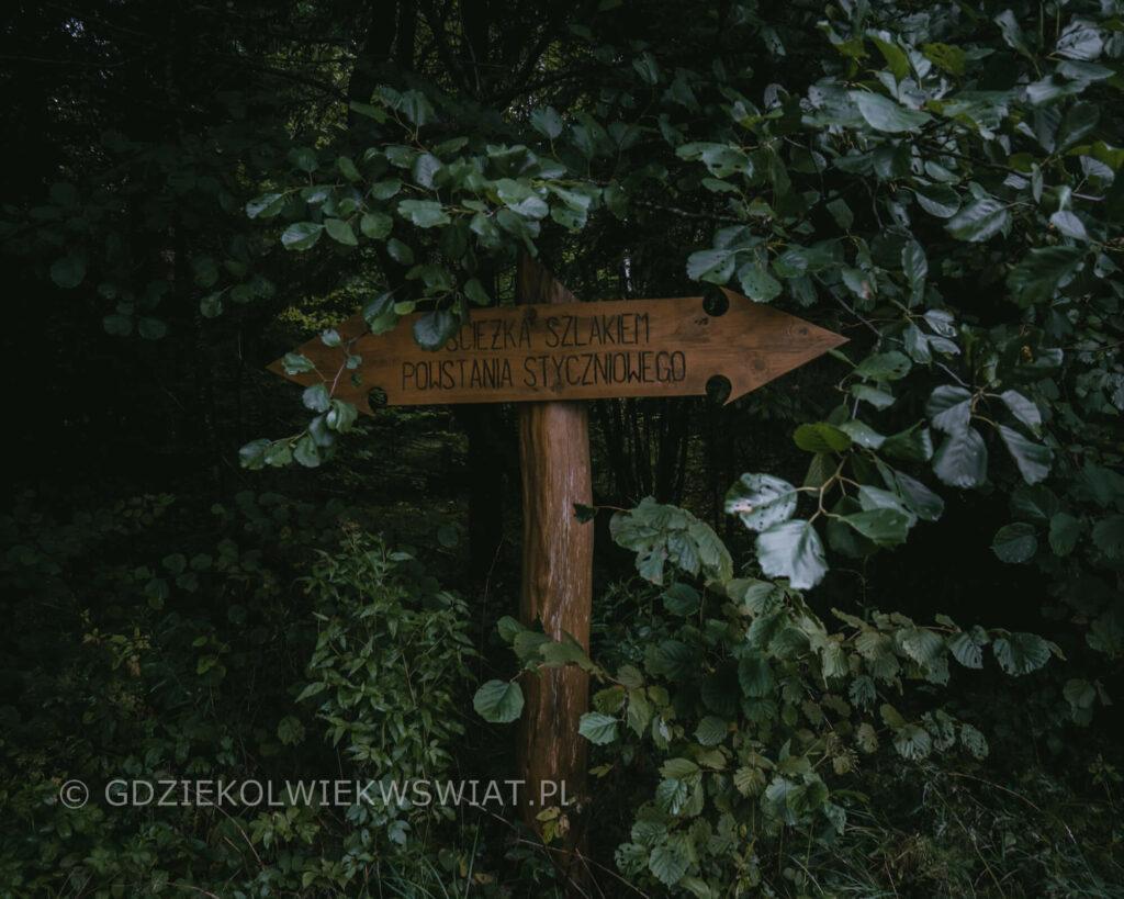 Puszcza Knyszyńska szlaki atrakcje mapa