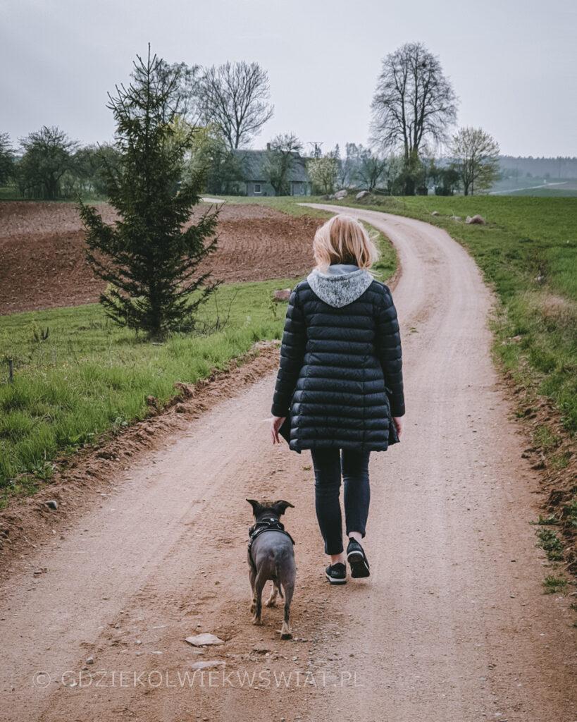 Suwalszczyzna z psem Wigierski Park Narodowy
