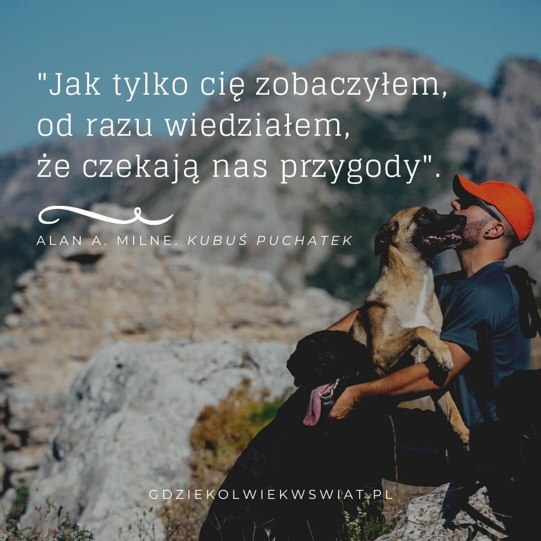 cytaty o psach i podrozach