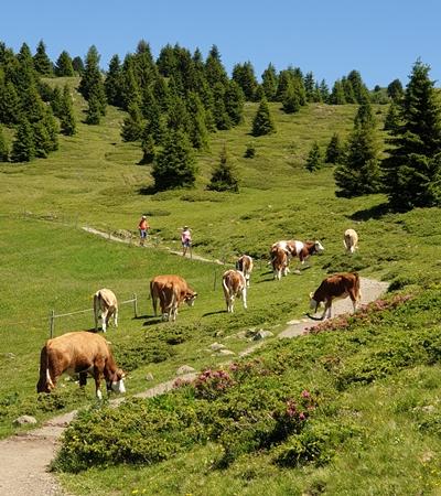 Dolomity Włochy trekking