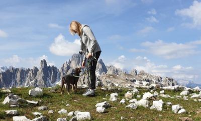 Dolomity z psem