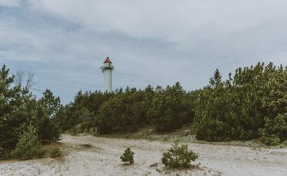 podróże z psem nad Morze Bałtyckie - Wydmy Lubiatowskie