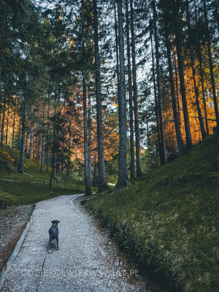 przewodnik po Dolomitach