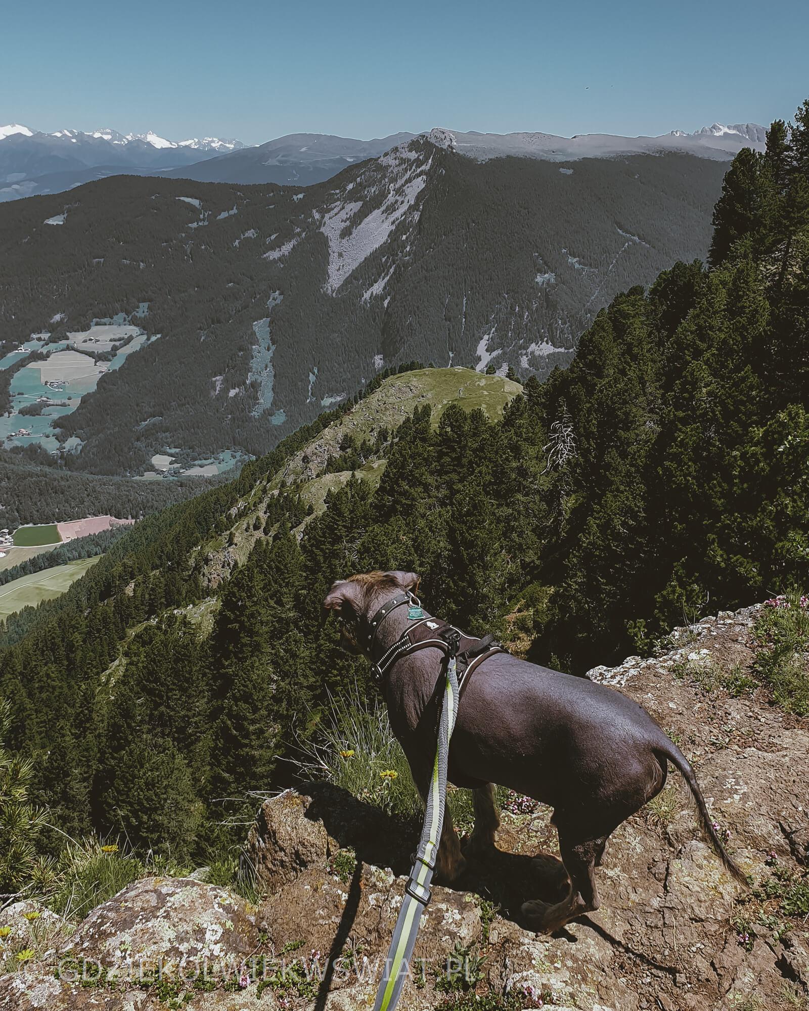 szlaki w Dolomitach