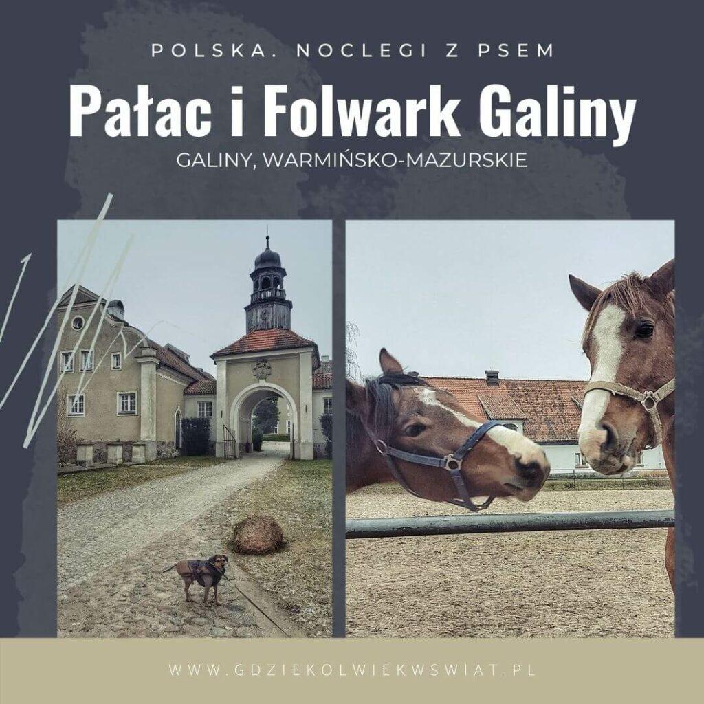 wakacje z psem w Polsce noclegi psiolubne