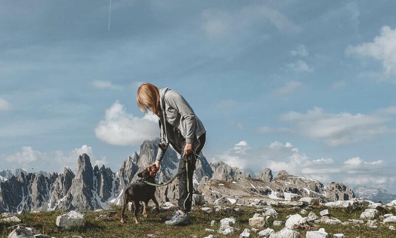 wyjazd w Dolomity z psem